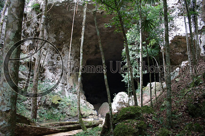 The entrance to the Rio Frio cave. (In English Cold River cave).  The Mountain Pine Ridge Reserve. Augustine, Belize