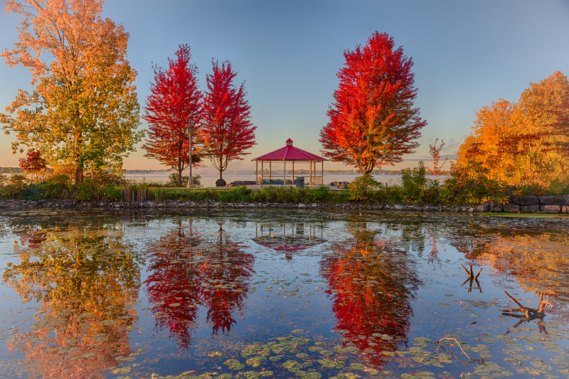 Red trees across turtle pond. HDR efx balanced.