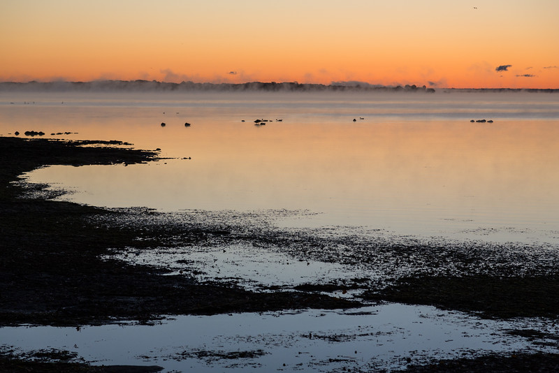 Bay of Quinte shoreline before sunrise. Low fog in distance.
