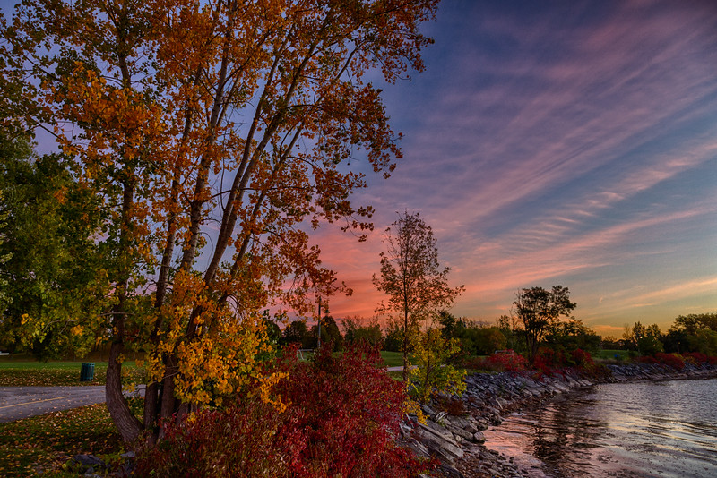 Bay of Quinte shoreline at East Zwicks Park before sunrise. Trees and bushes with orange and red leaves. Purple clouds to the east. HDR efx dark.