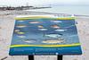 The fish of Lake Ontario sign at Wellington Rotary Beach.