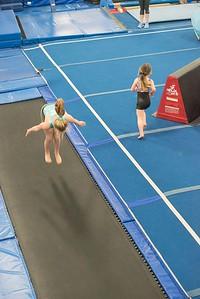 gymnastics-6785