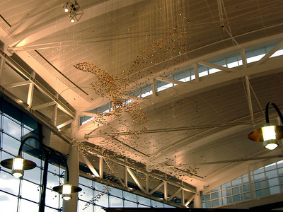 C terminal at Sea-Tac (pretty!)