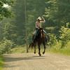 horseinair 017
