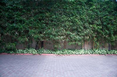 greens. digital.