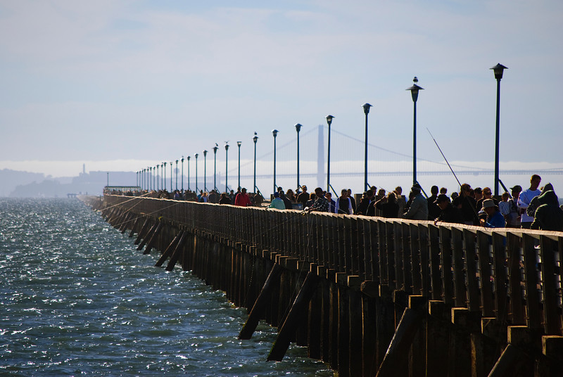 <b>Boardwalk at Berkeley Marina</b><br>Berkeley, CA  Golden Gate Bridge and Alcatraz Island in the background.