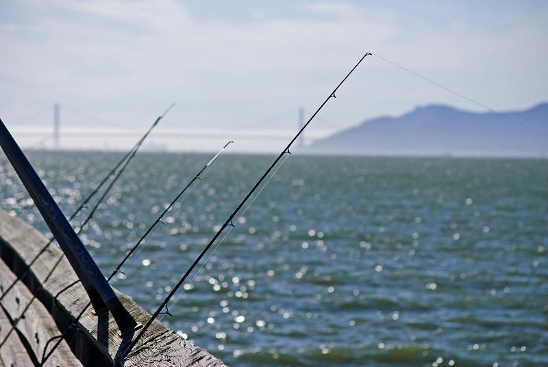 10-08-11 <b>Fishing</b> San Francisco Bay<br>Berkeley, CA  (Golden Gate Bridge in the background)