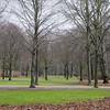 2013-12-11. Parti av Tiergarten, inte långt från Haus der Kulturen der Welt. Berlin [DEU]