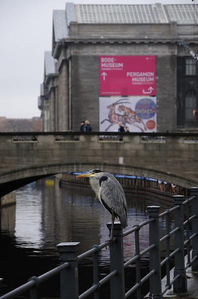 2013-12-10. - Berlin,  [DEU]