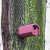 2013-12-11. Portable home for migratory birds, Berlin [DEU]
