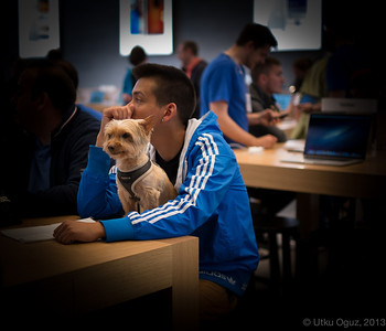 A Dog in Berlin Apple Store