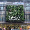 Vertical garden on the Galleries Lafayette