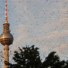 040803 - TV Tower