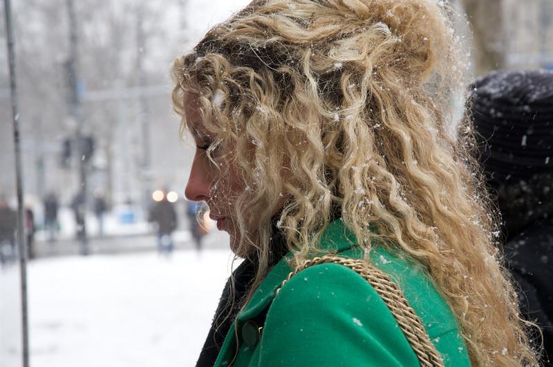 Snowflakes  286