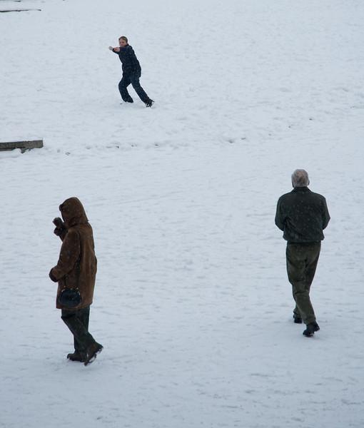 Snowballs  278