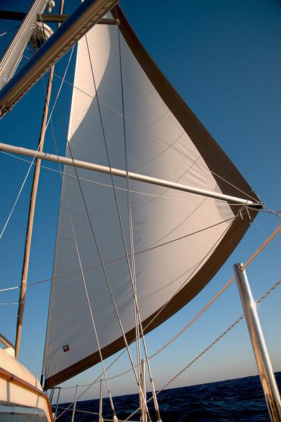 Bermuda Sailing 2012 19