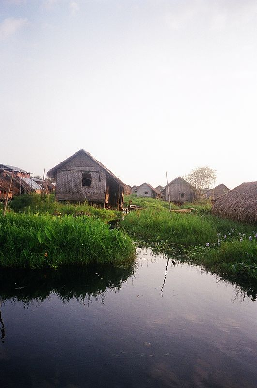 Village on stilts on Inle Lake, only accessible by boat.  This village was close to teh flaoting gardens where they grow tomatoes on a bed of waterlillies.