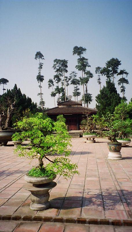 Temple and bonzai inside Thien Mu Pagoda, Hue.