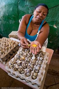 Quail egg vendor at a local market!