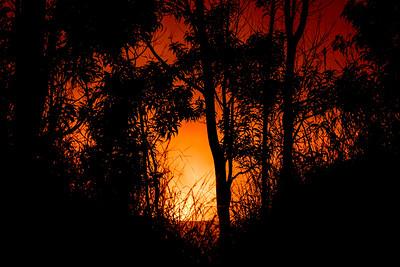 The molten lava of Kilauea lights up the night sky