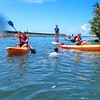 Enjoying the 'Anahulu River near Tsue's Farm, Haleiwa, HI