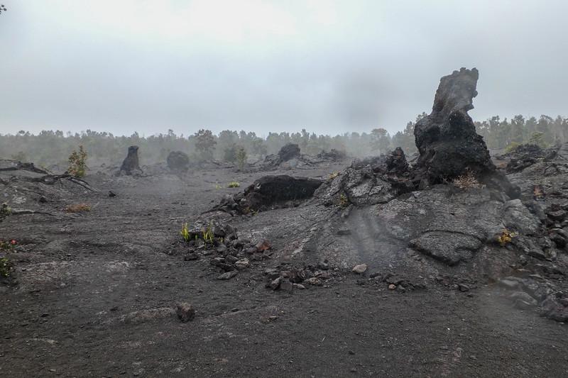 Mauna Ulu, Volcano National Park.