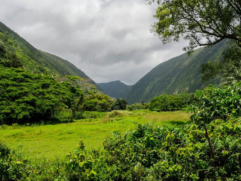 """View of the Waipi'o Valley """"W"""", Honokaa, HI"""