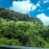 'Alenaio Gulch, near Ookala Park, Mamalahoa Highway, Hawai'i