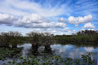 Florida, USA, Jan 2017