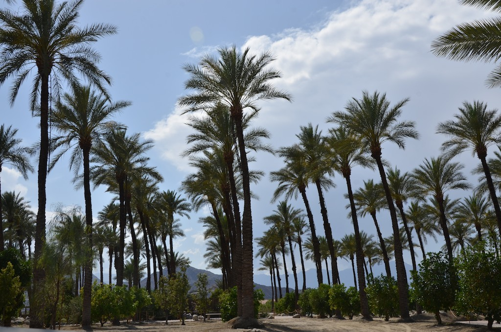 Palm Desert California , May 2012