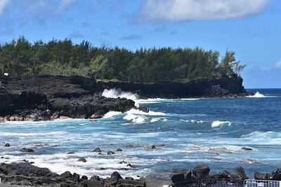 Reunion Island ; March 2019