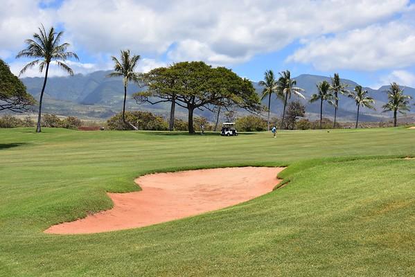 Maui , Hawaii ; Apr 2016