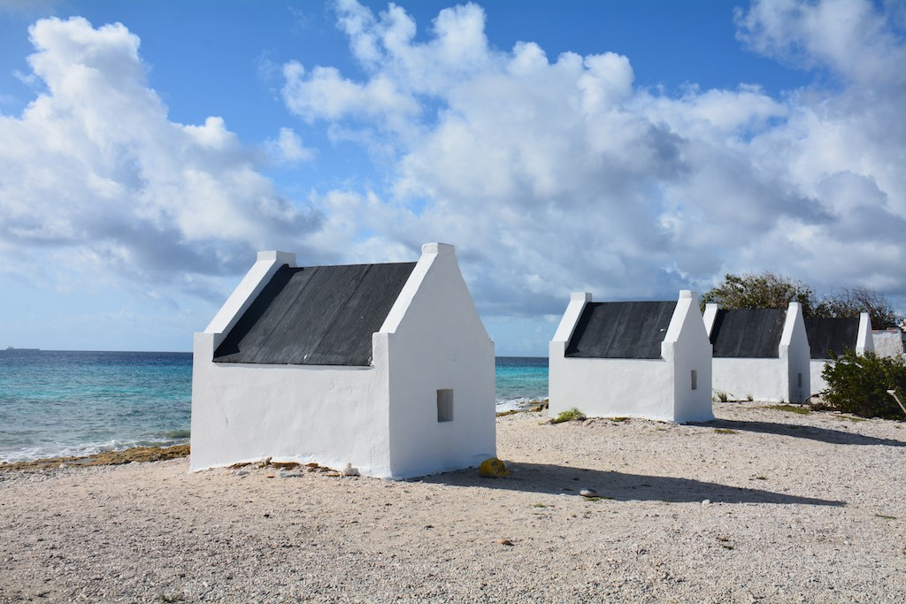 Bonaire ; Jan 2016