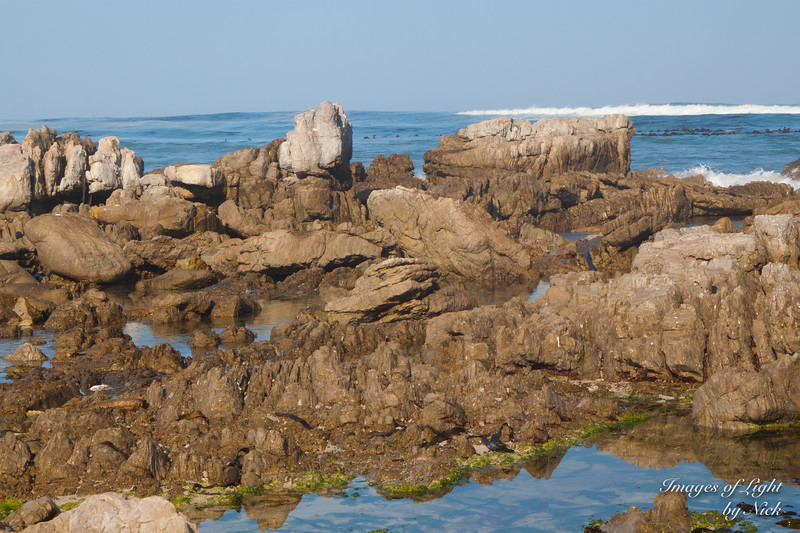 Betty's Bay-13-08-03-085