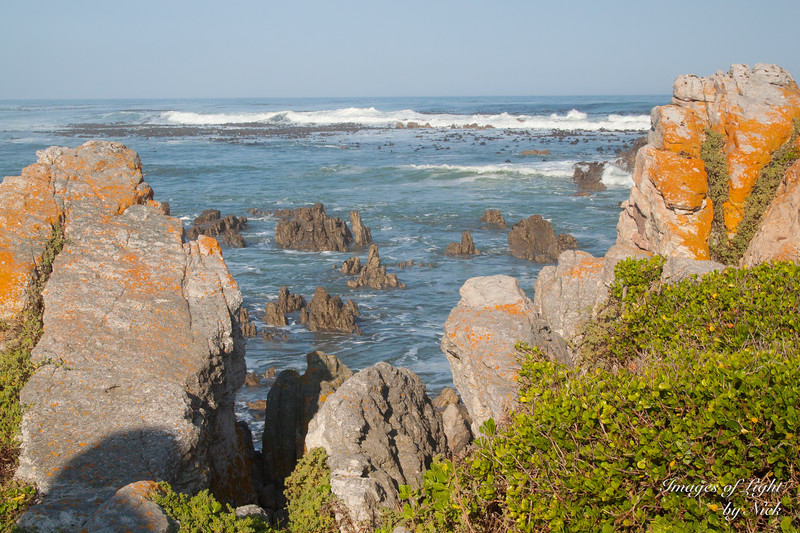 Betty's Bay-13-08-03-096