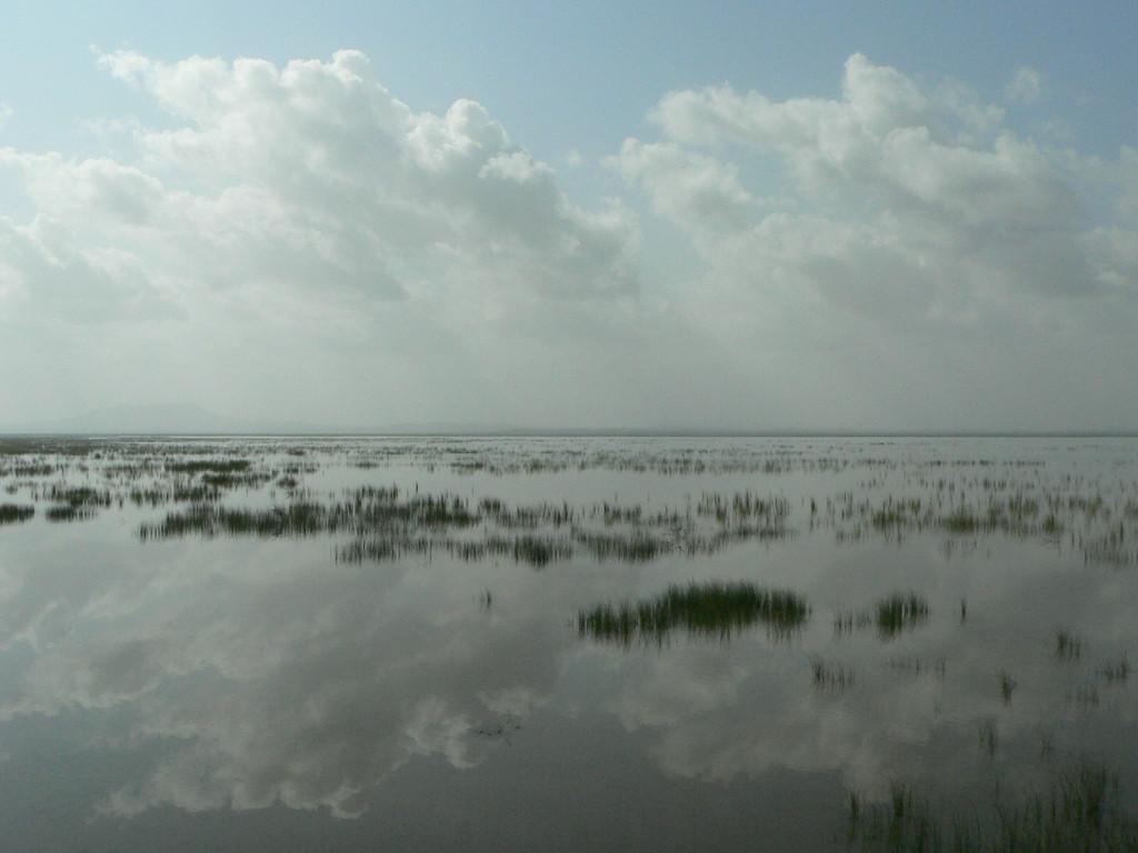 Chhari Dhand bird sanctuary