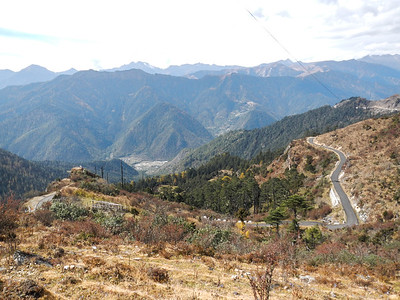 Chelela Pass - Haa Valley, Bhutan.