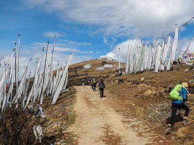 Chelela Pass - Haa Valley, Bhutan.