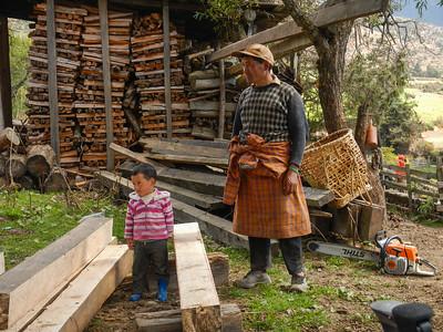 Cutting timbers.