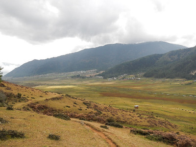 Phobjikha Valley is a winter home for Black-Neck Cranes.