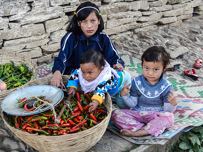 Preparing chilies for sale.
