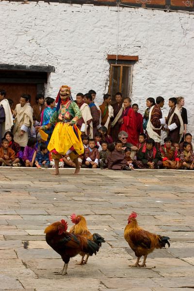 Fowl Participants