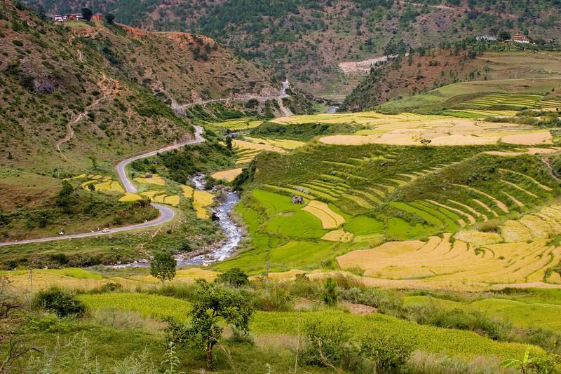 Approaching Wangdu