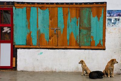 Two Way Street Paro, Bhutan