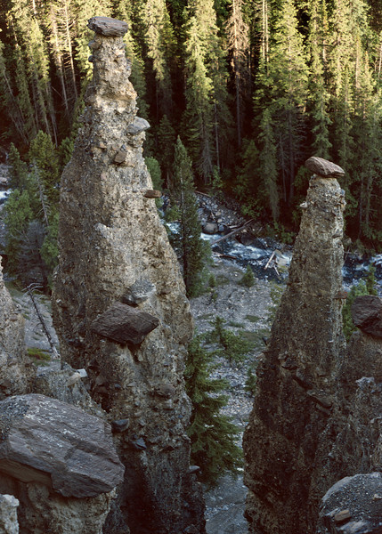 Hoodoo Creek Campground, Yoho National Park, British Columbia, Canada.