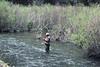 Cimarron River, NM