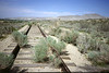 Abandoned Tracks Near George Air Force Base, Victorville, CA