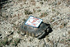 Rare Desert Tortoise Sporting our Special Patch