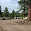 The Juniper Springs group camp