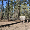 This campground is easily accessable by a 5 mile dirt and gravel road.  Just use the Van Dusen canyon road (the other accesses are longer and very much rougher.